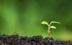 optimisation fonctionnement évaluation environnementale