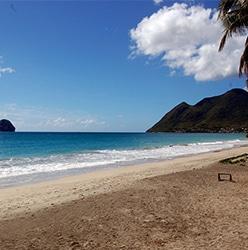 Analyse de 66 projets dans le secteur du tourisme en Martinique