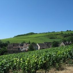 Study on rural tourist lodging in Burgundy