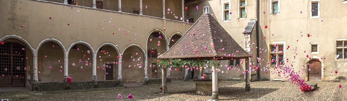 Marie-Hélène RICHARD, L'Échappée belle, 2015. Installation dans le 3e cloître du monastère royal de Brou (Bourg-en-Bresse) dans le cadre de l'exposition À l'ombre d'Eros.